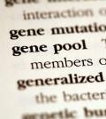 genetics1