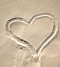 heart-cardio2