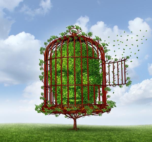 Study Links Psychiatric Disorders to Stroke Risk