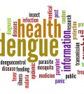 Dengue word cloud