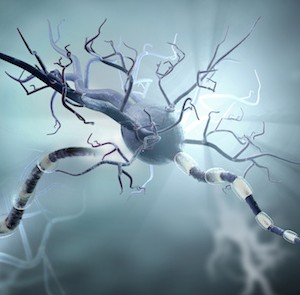3d medical illustration, nerve cells. Neurons concept for Neurological Diseases, tumors and brain surgery.