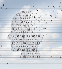 Alzheimer disease concept as a medical mental health care idea as a group of perched birds on an electrical wire flying away shaped as a side profile of a human face as a symbol for neurology and dementia or memory loss.