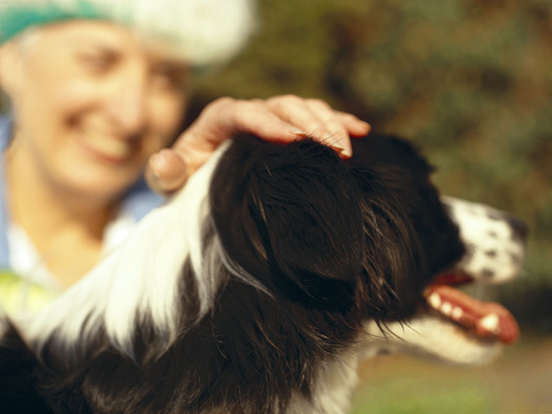 Pets Good Medicine for Those Battling Mental Ills