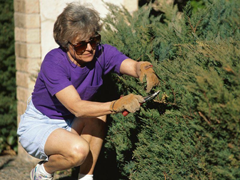 Even Housework, Gardening Can Help an Older Woman's Heart