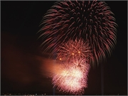 8 Tips to Ease Your Pets Through July Fourth Fireworks